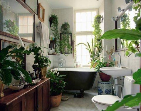Dodaj malo zelenila u kupaonicu  MojStan.net