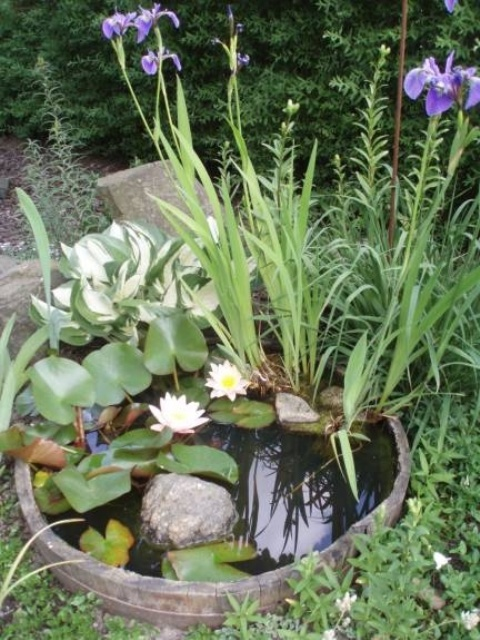 Minijaturna umjetna jezera i fontane  MojStan.net