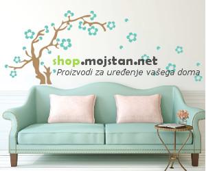 shopmsn300x250-2