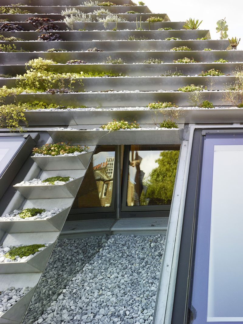 Vrt na krovu kuće  MojStan.net