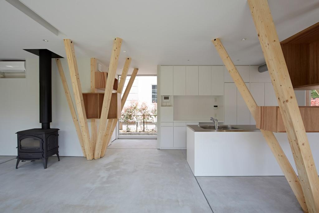 Kuća sa potpornim stupovima poput grana drveta