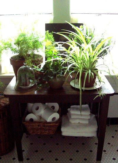 dodaj-malo-zelenila-u-kupaonicu-7
