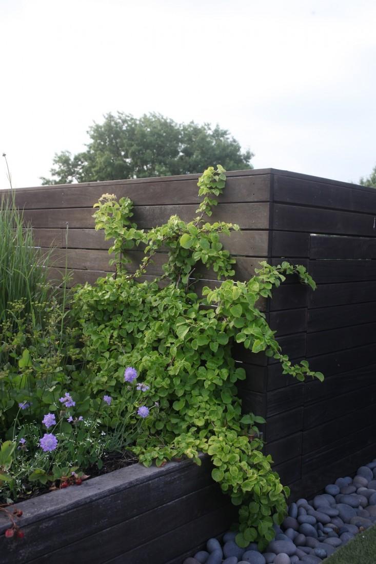 zeleni-vrt-na-krovu-12