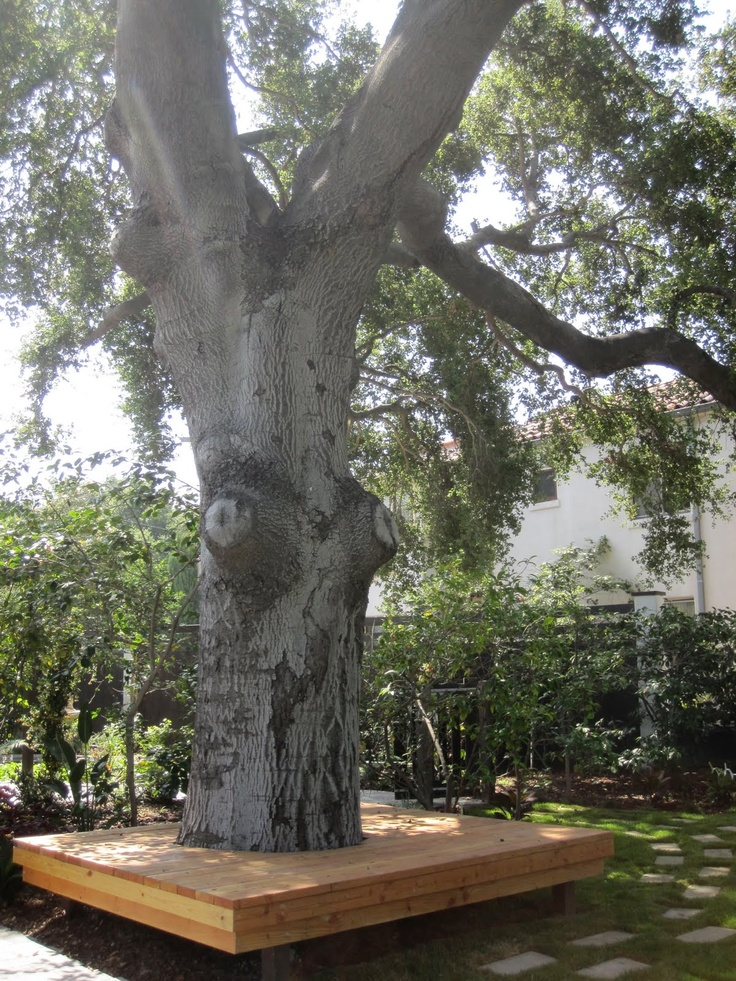 klupa-oko-drveta-5