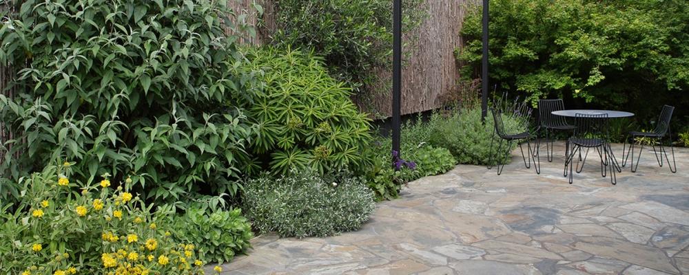 mali vrt u predgrađu melbournea 10