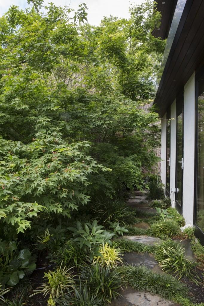 mali vrt u predgrađu melbournea 9