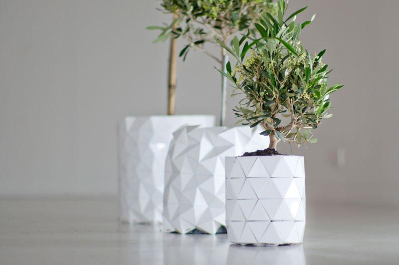 tegla-koja-raste-zajedno-sa-biljkom-3