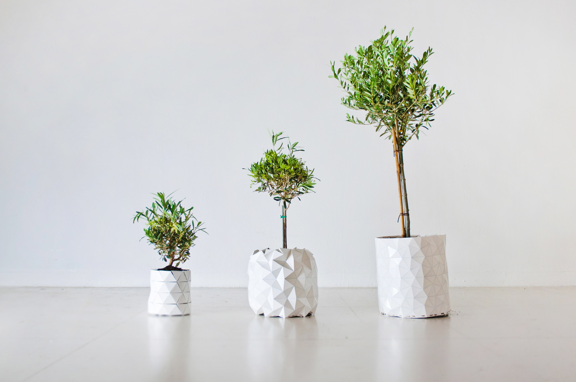 tegla-koja-raste-zajedno-sa-biljkom-6