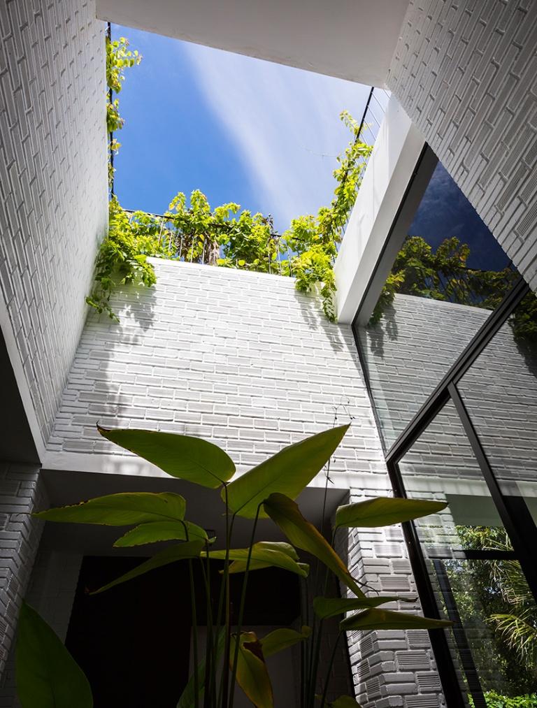 Stepenasti krov prepun zelenih biljaka
