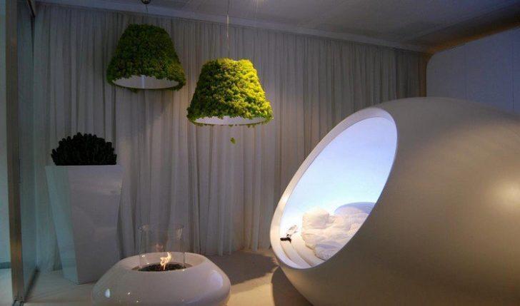 Mahovina - prirodna dekoracija interijera