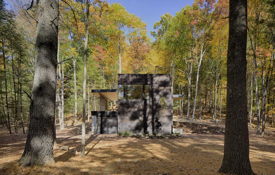 Crna kuća u šumovitom okruženju