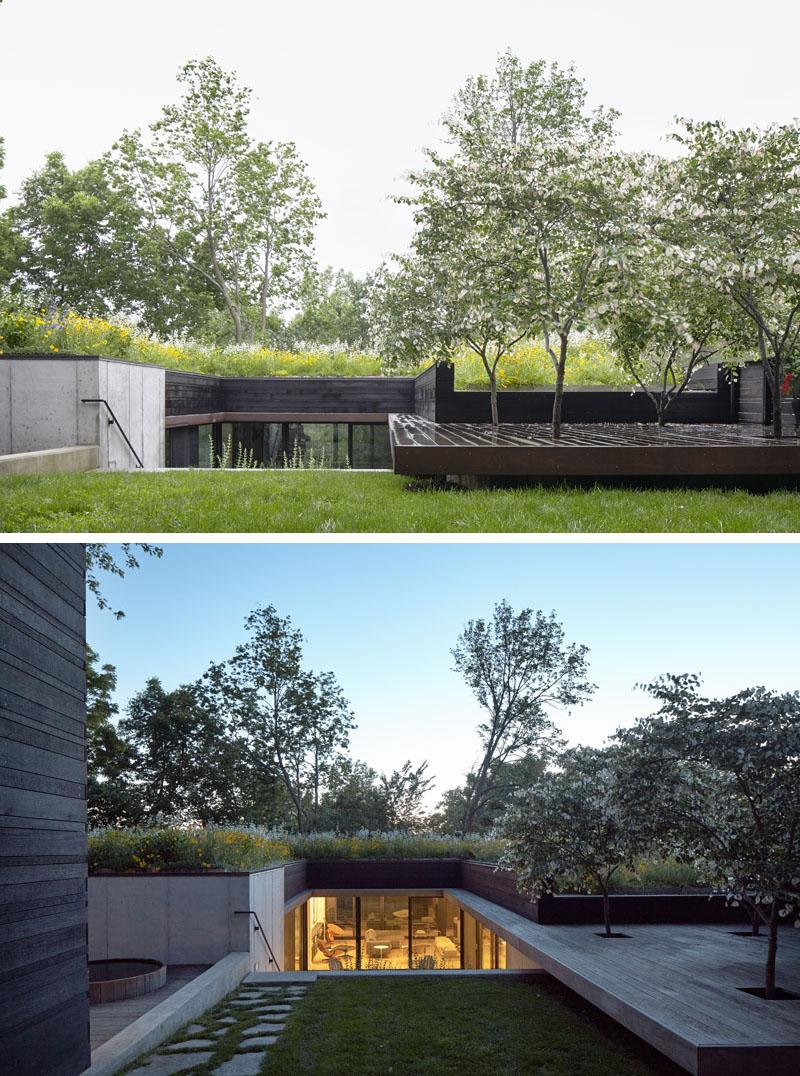 Bujno zelenilo na krovu kuće u Kansasu