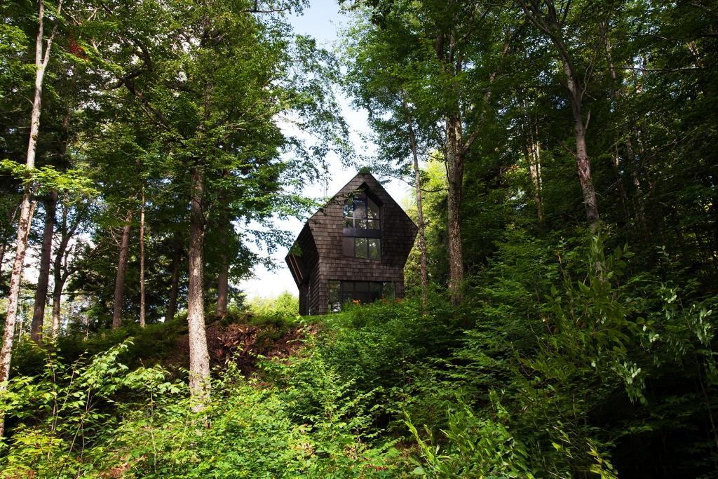 Treća generacija šumske kolibe