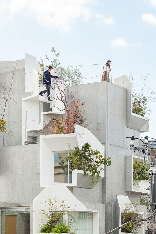 Zgrada sa gnijezdima za biljke
