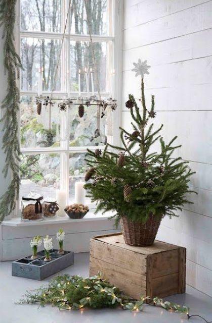 Božićna drvca po mjeri malih stanova