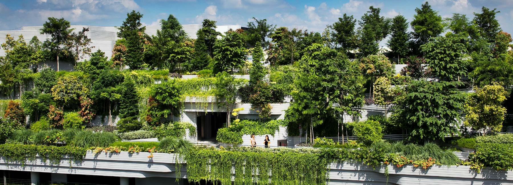 Zgrada prekrivena zelenim slojem