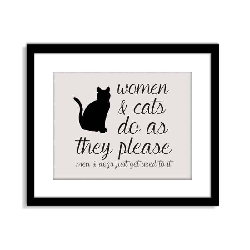 Posteri za dekoriranje zida sa šaljivim činjenicama o mačkama